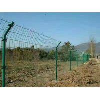 浸塑铁丝护栏网 圈地铁丝网 绿色铁丝防护网-祥筑丝网厂家现货