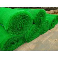 陕西三维植被网,三维网护坡