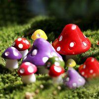 苔藓微景观多肉植物小摆件迷你七彩小蘑菇苔藓生态瓶手工diy材料