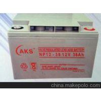 奥克松蓄电池NP38-12电池供应商报价型号与参数