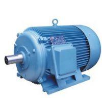 湖特电机厂家直销FTY、XYT、YTCX三相稀土永磁同步电动机,超高效节能电机,高压永磁同步电动机