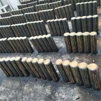 新农村专用水泥仿树皮联排树桩 东营水泥仿木树桩路沿石