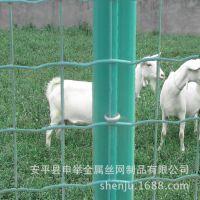 养殖浸塑荷兰网、镀锌牛栏网、铁丝网边坡防护网挡鼠板