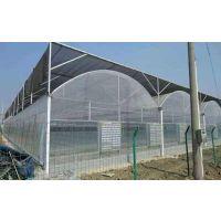 海南鑫泽薄膜连栋无土栽培蔬菜温室供应/10亩地薄膜智能温室