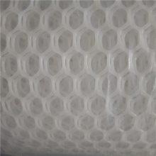 塑料养鸭网 床垫塑料网 养鸭网现货