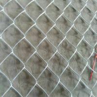 护坡镀锌铁丝网-尽情咨询厂家报价