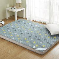 沙发记忆棉软防水褥子薄超大超厚的木板床垫地冰丝褥疮硬板用品防