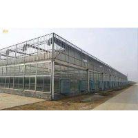 四周玻璃顶部薄膜温室一平方的价格 玻璃温室 文洛式玻璃温室
