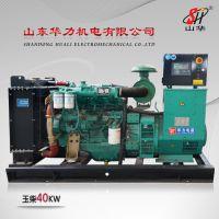 40KW玉柴柴油发电机组 厂家直销 山东华力机电