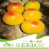 特色蔬菜种子系列(家庭装) > 黄一点红 (20粒)小番茄西红柿