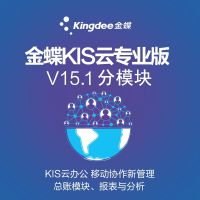 正版金蝶KIS云专业版V15.1总账报表仓库管理 金蝶财务软件分模块