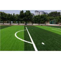 优世体育 建设学校人造草足球场 使用频率高 日常维护方法
