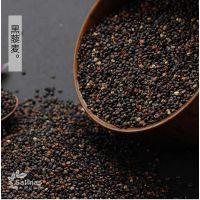 江苏地区藜麦供应 进口黑藜麦批发 玻利维亚大颗粒藜麦米