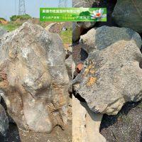 吨位太湖石价格 广东吨位景观石批发基地 太湖石之乡 广东英德石