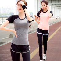 新款春夏季健身服运动服套装短袖长裤显瘦速干跑步瑜伽服女套装