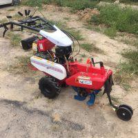 现货大葱大姜培土机-10马力手扶拖拉机-柴油自走式微耕机