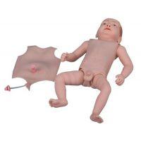 高级婴儿护理人模型、组合式婴儿护理人模型