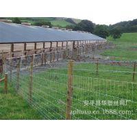 供应养殖围栏网、养殖护栏网