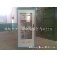 专业供应板式计量秤、高温物料计量链板秤