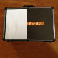 天地首和流量800毫升/分钟手提式乙烯分析仪TD600-SH-B-C2H4