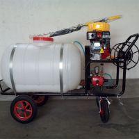 鸡鸭养殖打药灭菌多功能电动喷雾器农药喷洒机 澜海机械