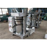 电动芝麻香油机 全自动液压瓜子榨油机 韩式移动式压榨机
