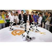 供应机器人 跳舞机器人出租 春晚同款机器人租赁 迎宾机器人出租