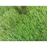 幼儿园地面铺设 塑料草坪地毯环保草坪跑道地面
