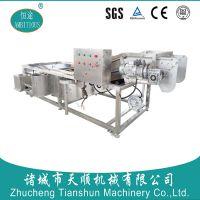 TSXQ-50型恒途牌桑葚鼓泡清洗机(304不锈钢生产)