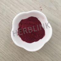 花青素1%-25%巴西莓提取物