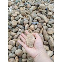 批发园林鹅卵石,铺路河卵石,5-10鹅卵石,各种规格石头齐全