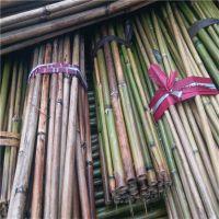 大量批发贵州安顺用的2.5米西红柿架竹竿(图)