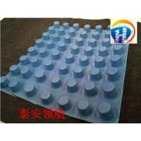 北京排水板厂家价格介绍