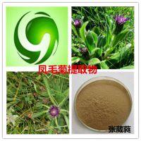 固原浩宇种植供应凤毛菊提取物 速溶粉 提取液 超微粉500目