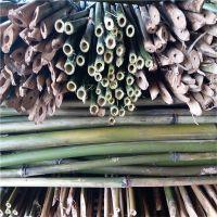 大量供应2.5米-3米优质江西菜架竿
