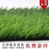 宏跃人造草坪厂家直销室内外足球场国标50仿真塑料假草皮地毯