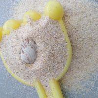 儿童天然海沙 20-40目沙池游乐场专用水洗砂 可试样