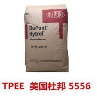 进口美国杜邦TPEE塑料原料中国上海总代理商