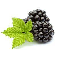 进口黑莓浓缩汁量大从优