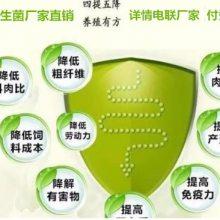 帮助牛羊消化添加剂-乳酸菌酵母菌芽孢杆菌复合产品