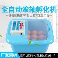 迷你 孵化机全自动 设备 小型 家用型鸡蛋山鸡孵蛋器智能控温