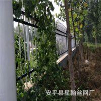 厂家直销围山圈地铁丝网围栏网 圈地养殖围栏网  圈地专用护栏网