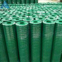 浸塑绿色钢丝电焊网 河北厂家直销