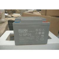 非凡蓄电池12FIT30/12V30AH非凡储能免维护蓄电池厂家 价格