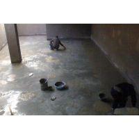 哈尔滨防水公司游泳池防水堵漏专业防水谁家做得好