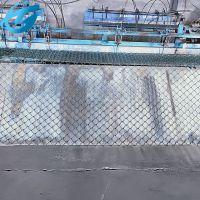 菱形养殖勾花网 绿色环保护栏网