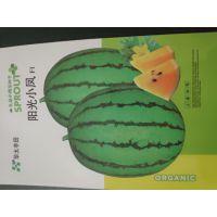 黄瓤西瓜品种黄肉小西瓜种子阳光小凤