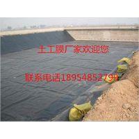 http://himg.china.cn/1/5_396_1052377_400_300.jpg