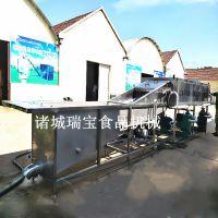 瑞宝XJ-6000型大姜去泥机 生姜去泥机