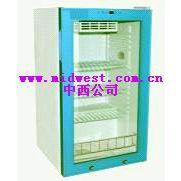 中西实验室恒温箱 型号:FY12/YS-100L库号:M402043